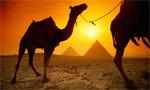 Фитнес-тур Планеты Фитнес в Египет