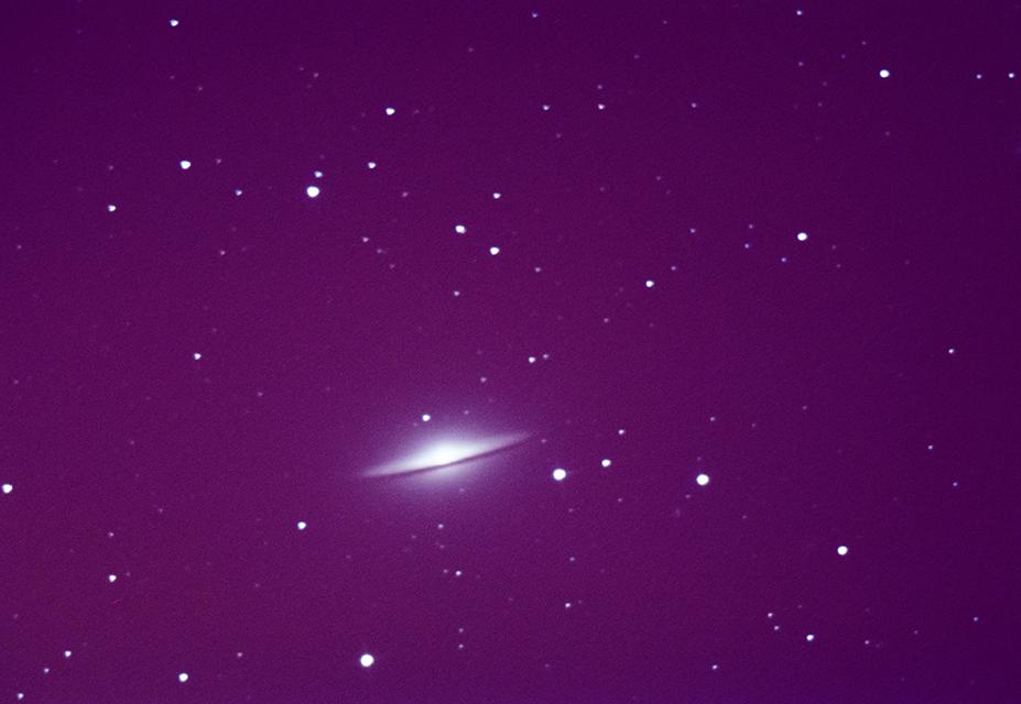 M104-web
