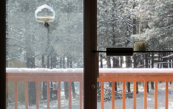11-11-14 snow day 007