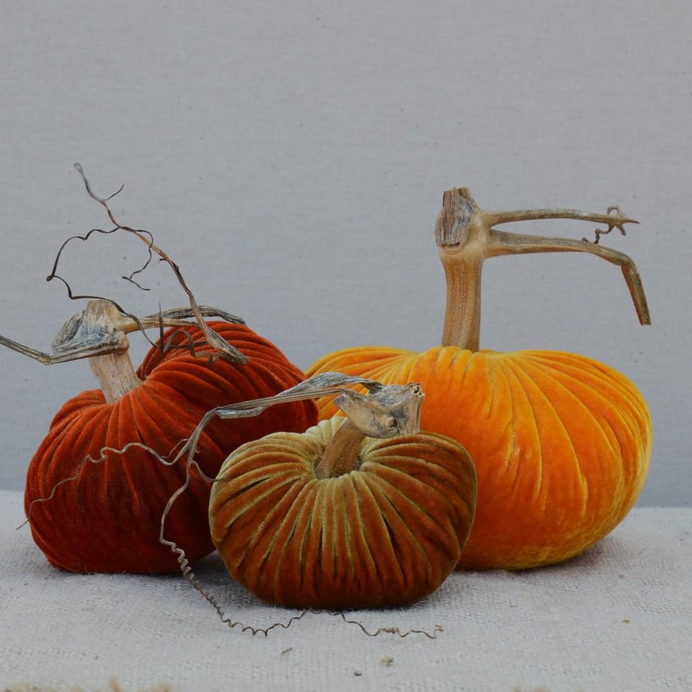 Harvest_Trio