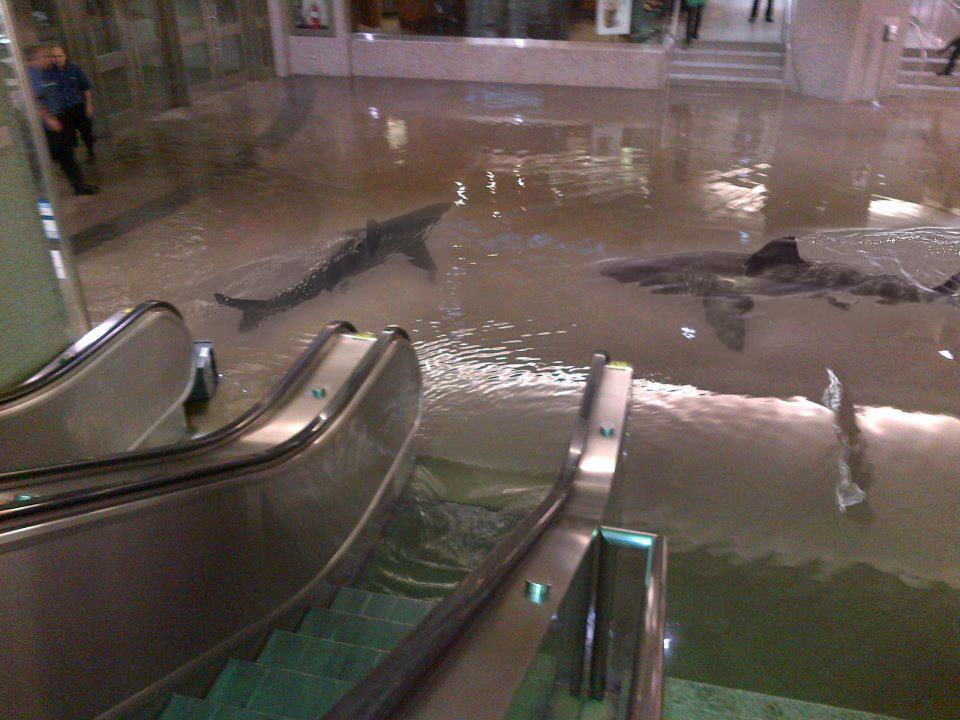 union_flood