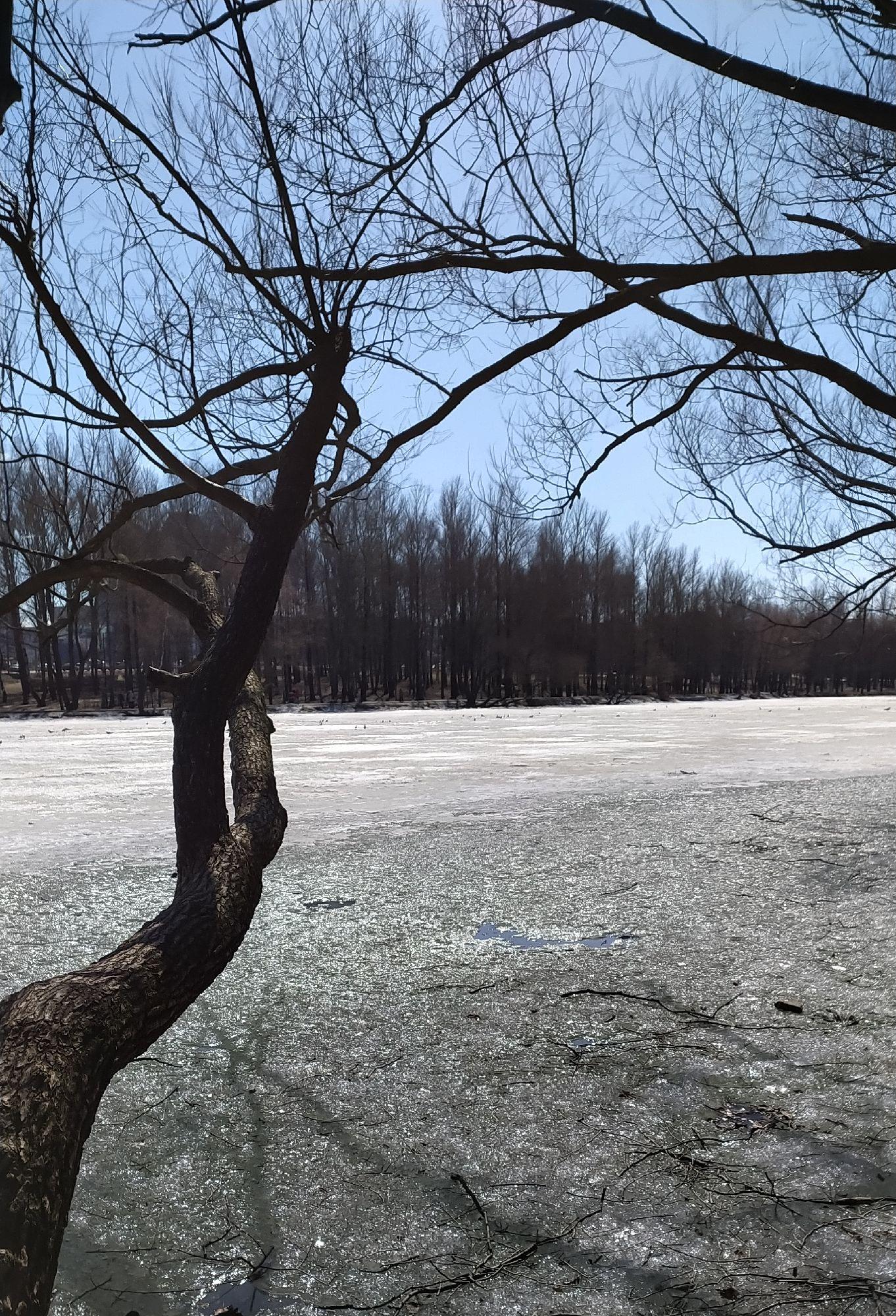 А на пруду ещё лёд...