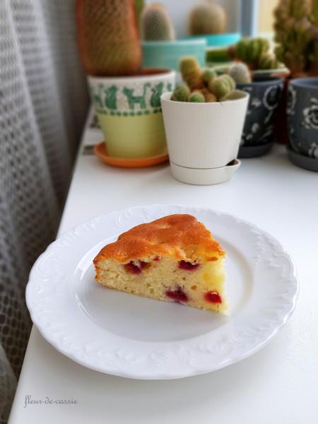 йогуртовый пирог с малиной 2