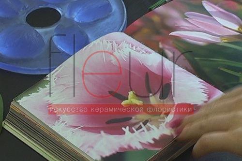 clip_image036[4]