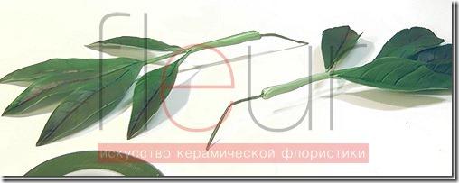clip_image198[4][3]