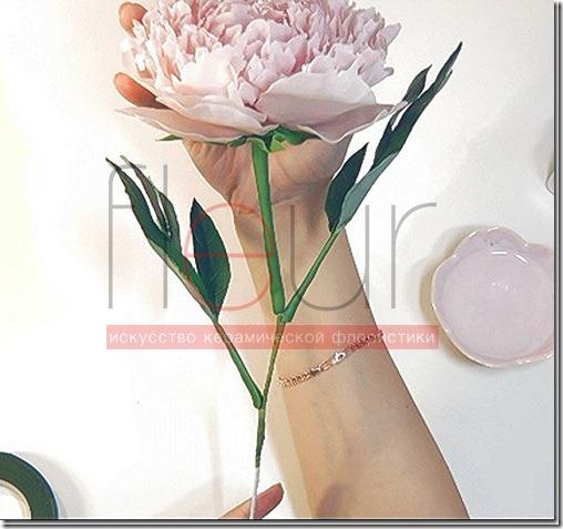 clip_image200[4][3]