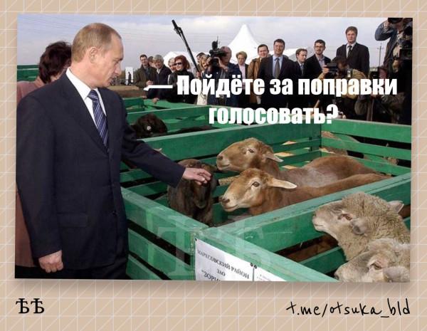 Будни_паПуаССи
