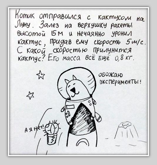 fotovivo