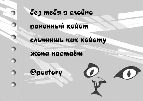 kosh_043.png