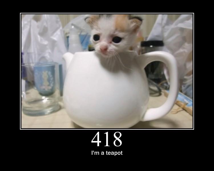 teapot-kitten