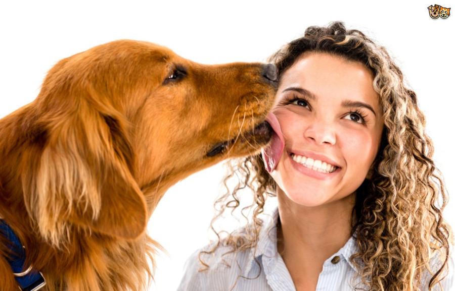 woomen and dog