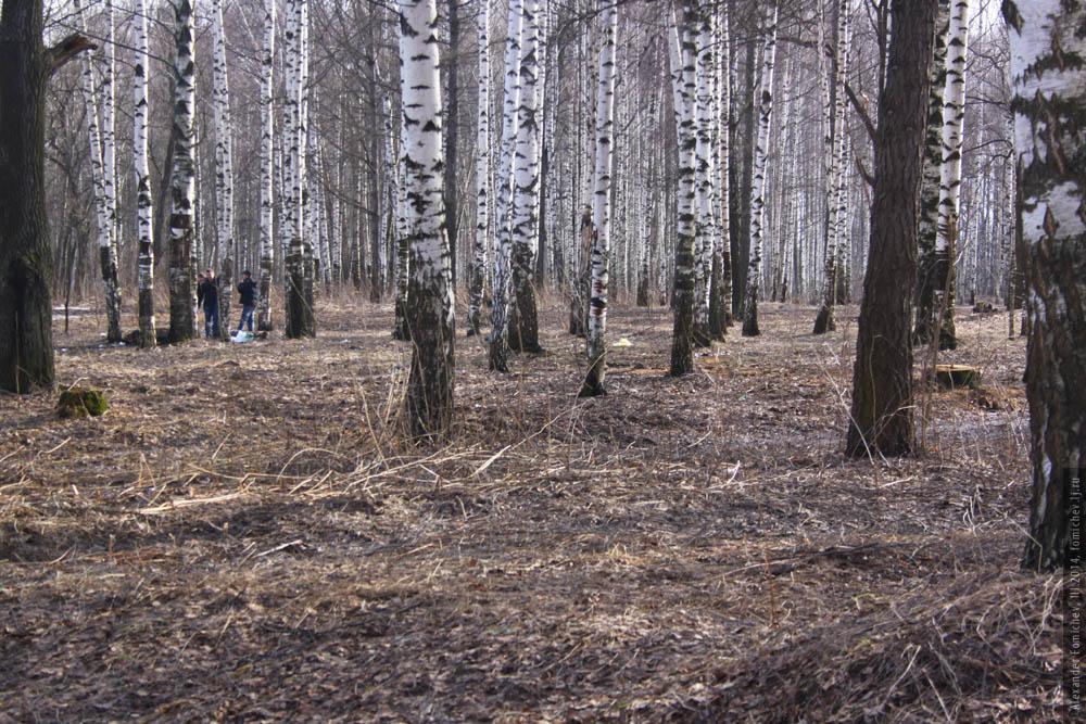 10-pavlovskaya