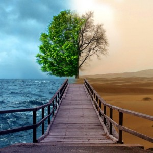 bipolar-nature-ipad-wallpapers