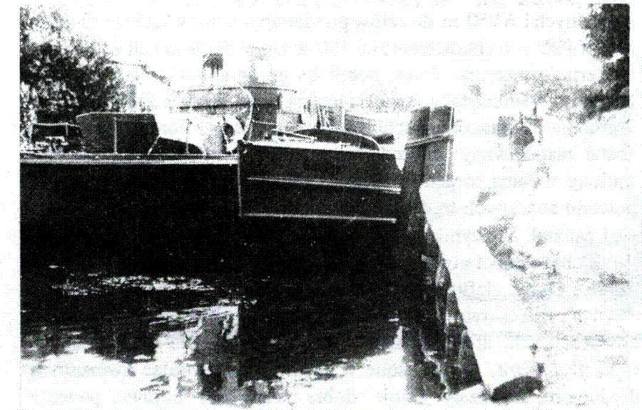 САВАНОРИС и ШАУЛУС  в Клайпеде