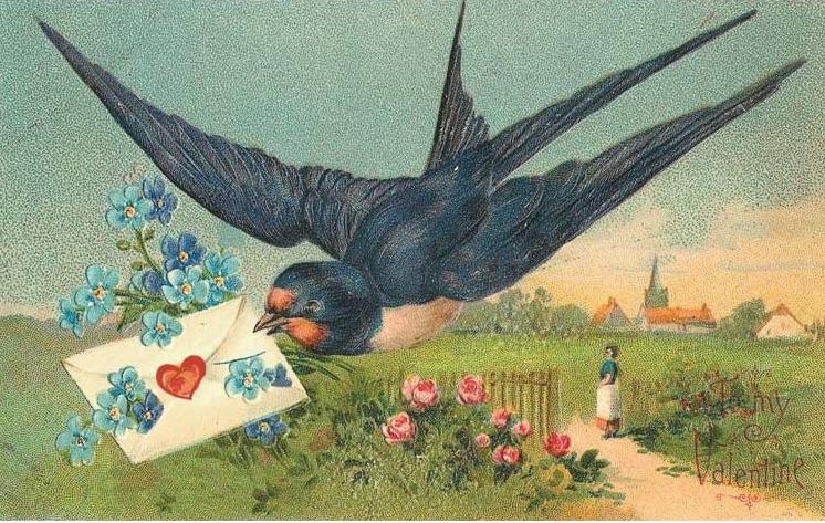 Bird letter.jpg