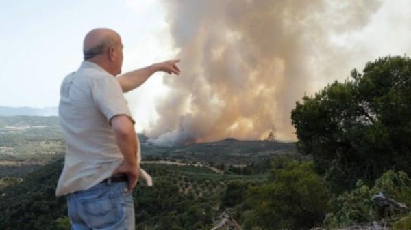 Forest Fires Spain.jpg