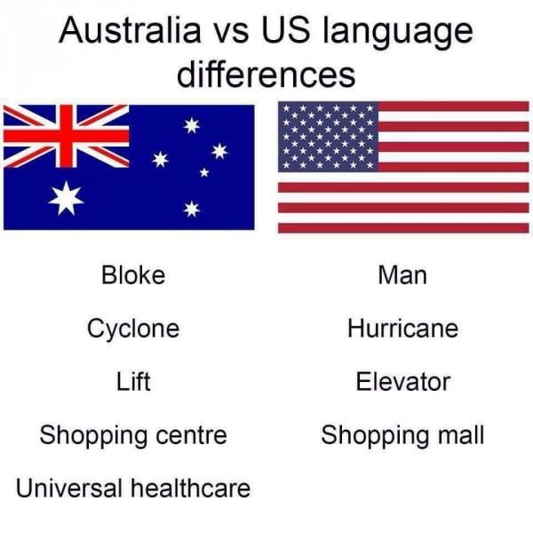Language Differences.jpg