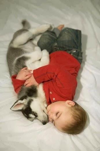 Babe_Puppy