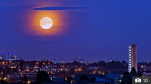 HARVEST MOON GLASGOW.jpg