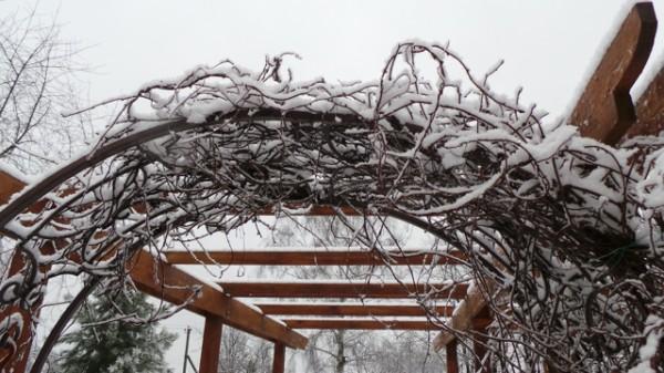 20131126_SNOW 03