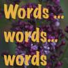 Lilac 2014 IMG_7099