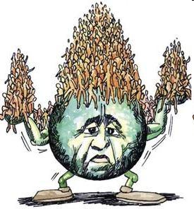 Overpopulation (1)