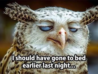 FB - I should have gone to bed earlier