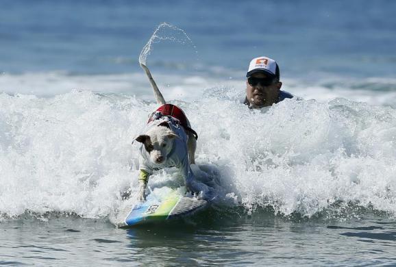 SURF_R