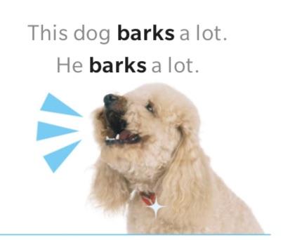 THIS DOG BARKS A LOT.jpg