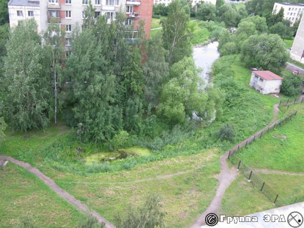 Пруд на участке где планируется стройка