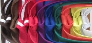 belts-20161119