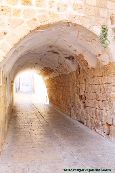 тунель2