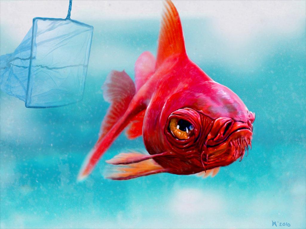 Рыбки приколы картинки