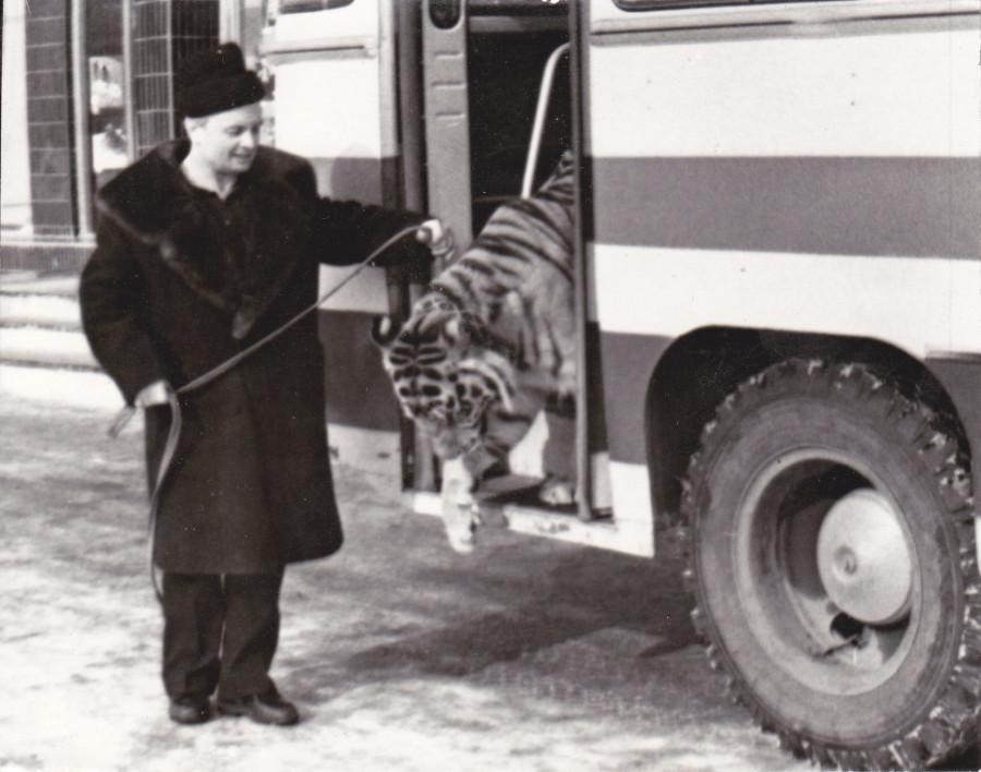 Кису выводят из автобуса