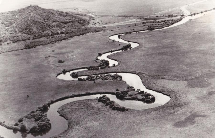 Река-змея