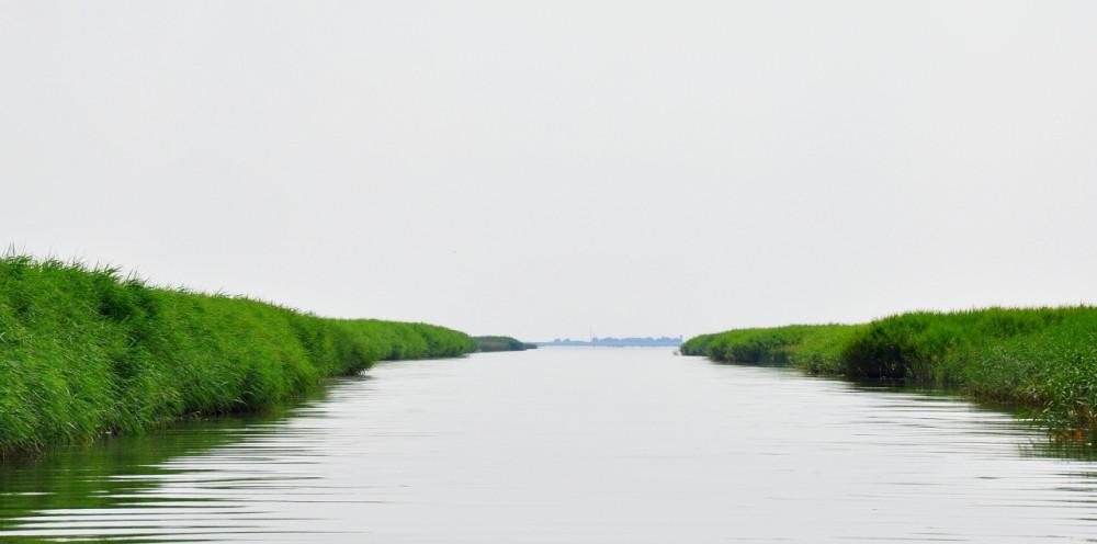 клев приморско-ахтарск