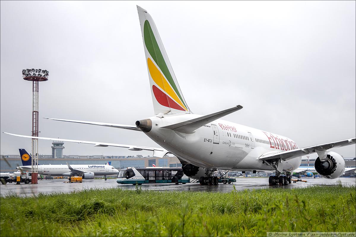 DME_Ethiopian_0139