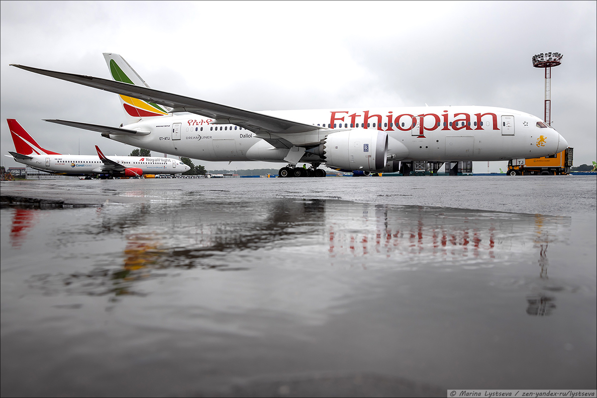 DME_Ethiopian_0168