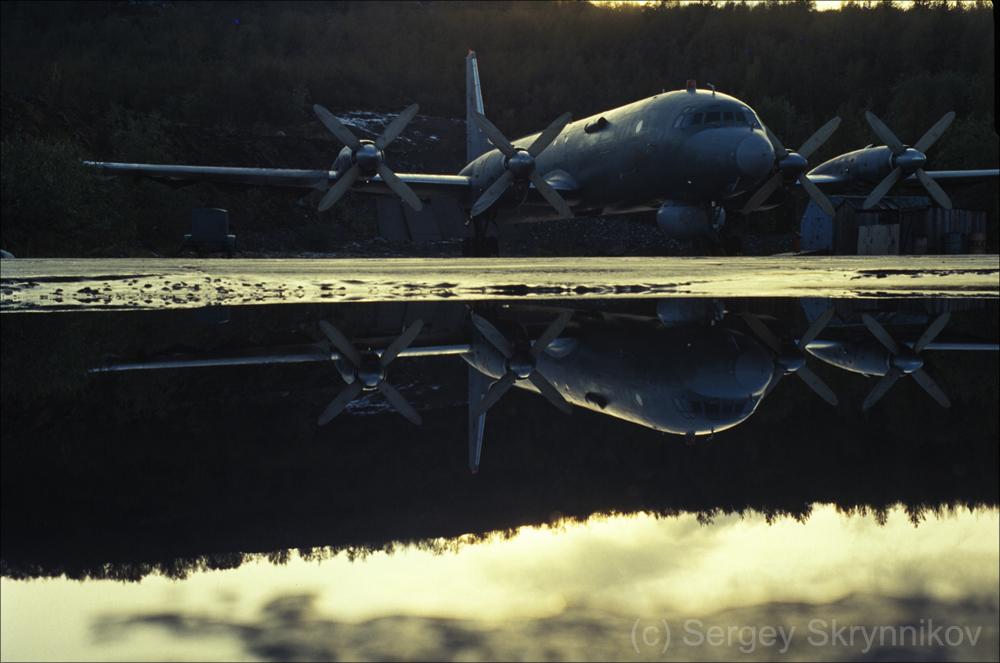 Il-38 SkrSA10