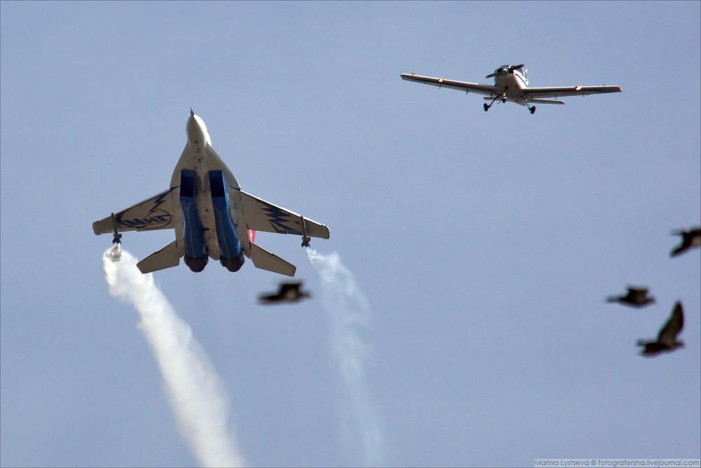 MiG-29OVT_MI_0040