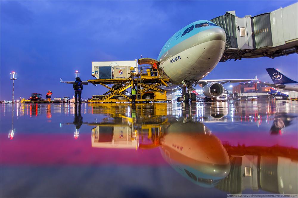 Что происходит в голубом самолете за 120 минут и другие факты