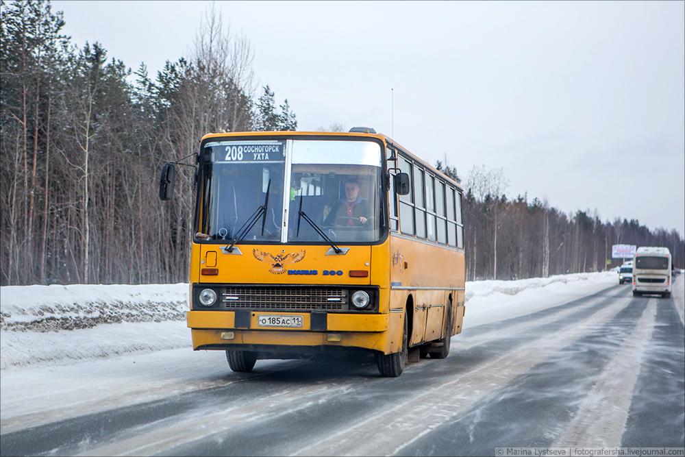 LYS54485