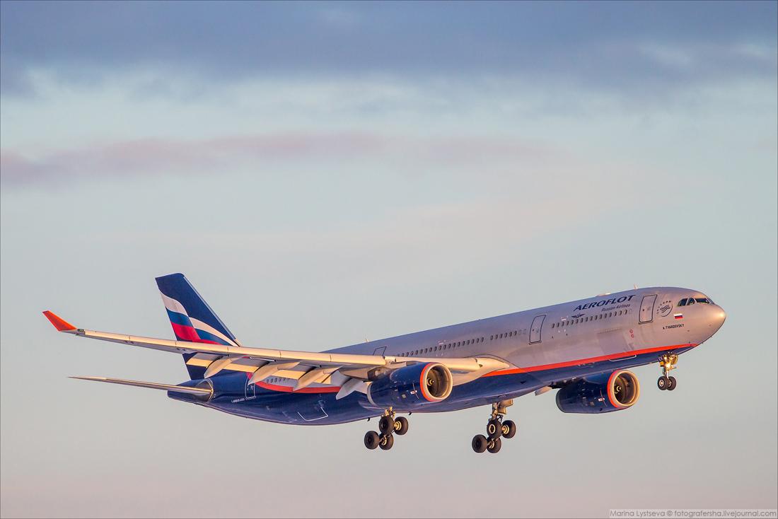 AFL A330 SVO 0002