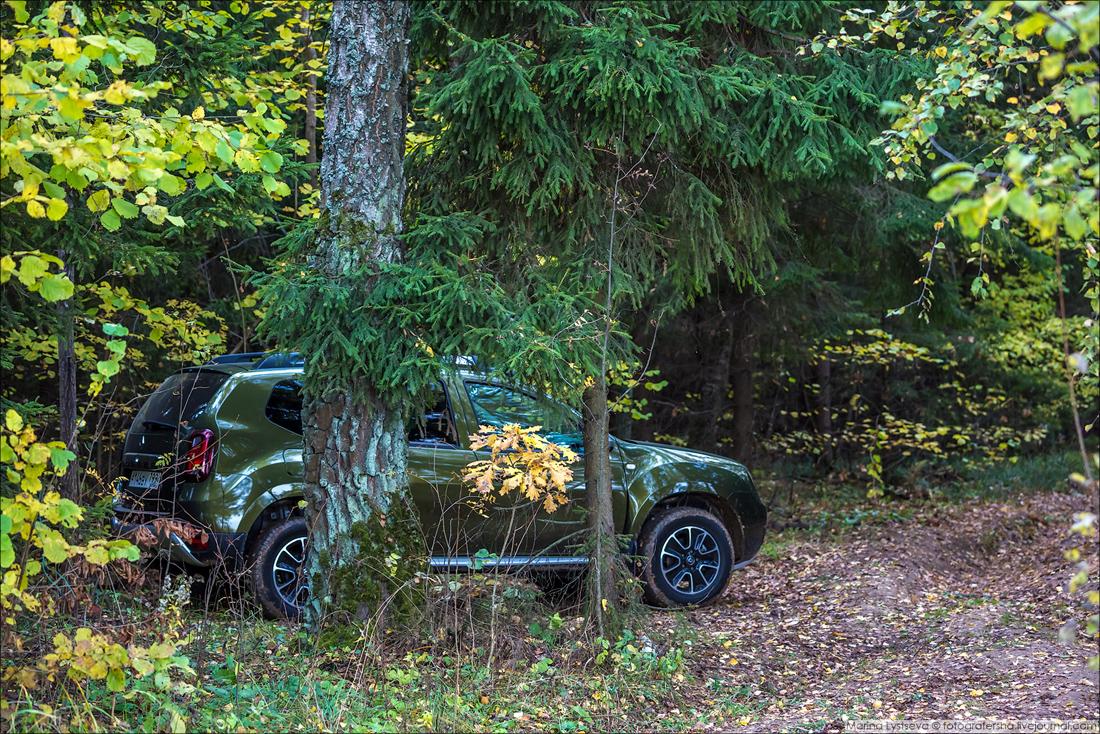 Renault Duster 078