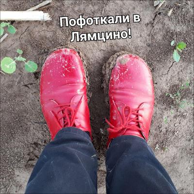 photo_2018-11-26_08-44-48