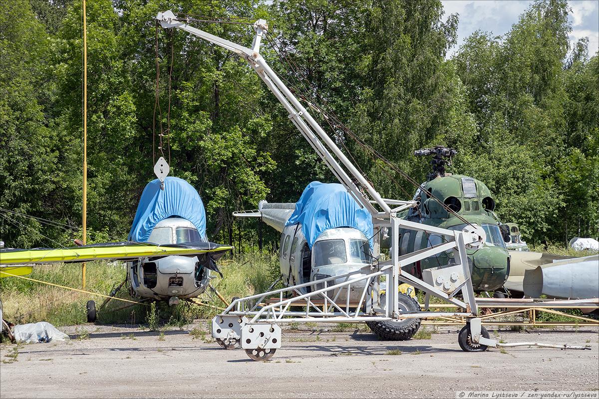 Котэ авиационные три штуки! Самовывоз из Орешково Oreshkovo_0840