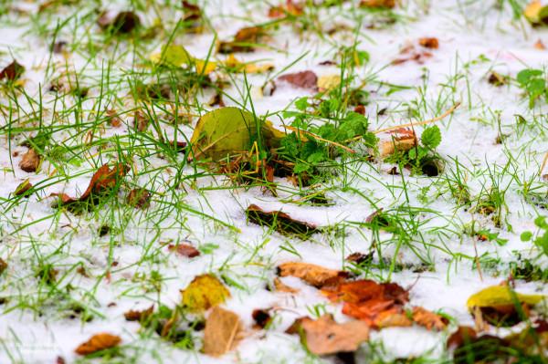#смотримподноги - первый снег