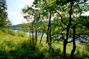 Москва-река недалеко от Можайска