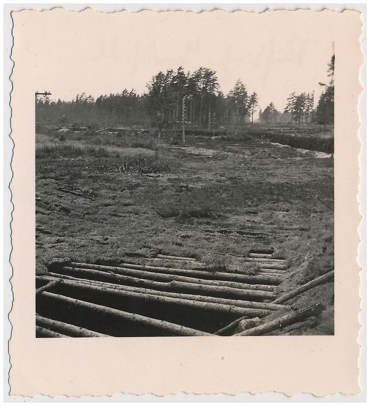 лужский рубеж фото тыквой