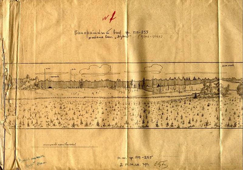 Панорамный вид гр. ПП-255 района высоты «Язык»